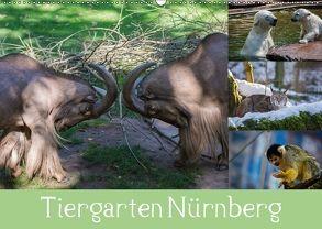 Tiergarten Nürnberg (Wandkalender 2018 DIN A2 quer) von Haas,  Ronny
