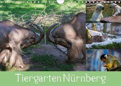Tiergarten Nürnberg (Wandkalender 2019 DIN A4 quer) von Haas,  Ronny