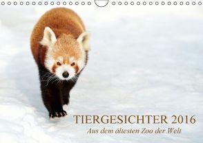 Tiergesichter 2016 (Wandkalender 2016 DIN A4 quer) von Stotz,  Manfred