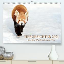 Tiergesichter 2021 (Premium, hochwertiger DIN A2 Wandkalender 2021, Kunstdruck in Hochglanz) von Stotz,  Manfred