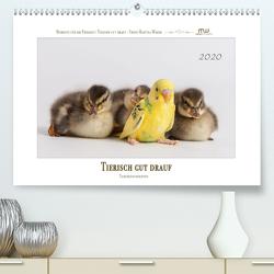 Tierisch gut drauf – Tierfreundschaften (Premium, hochwertiger DIN A2 Wandkalender 2020, Kunstdruck in Hochglanz) von Wrede,  Martina