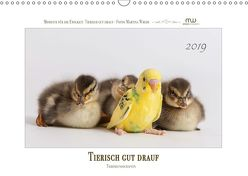 Tierisch gut drauf – Tierfreundschaften (Wandkalender 2019 DIN A3 quer) von Wrede,  Martina