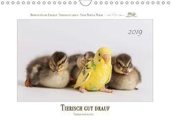Tierisch gut drauf – Tierfreundschaften (Wandkalender 2019 DIN A4 quer) von Wrede,  Martina