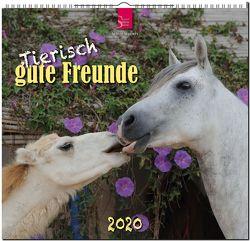 Tierisch gute Freunde von Redaktion Verlagshaus Würzburg,  Bildagentur
