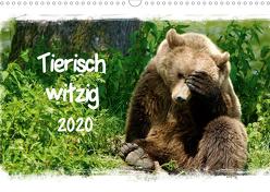Tierisch witzig (Wandkalender 2020 DIN A3 quer) von / Kottal,  Elsner