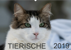 Tierische 2019 (Wandkalender 2019 DIN A2 quer) von N.,  N.