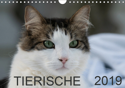 Tierische 2019 (Wandkalender 2019 DIN A4 quer) von N.,  N.