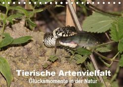 Tierische Artenvielfat Glücksmomente in der Natur (Tischkalender 2019 DIN A5 quer) von Erlwein,  Winfried