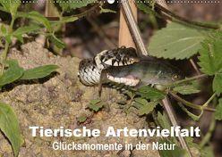 Tierische Artenvielfat Glücksmomente in der Natur (Wandkalender 2019 DIN A2 quer) von Erlwein,  Winfried
