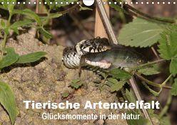 Tierische Artenvielfat Glücksmomente in der Natur (Wandkalender 2019 DIN A4 quer) von Erlwein,  Winfried