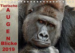 Tierische Augen-Blicke 2019 (Tischkalender 2019 DIN A5 quer) von Wenner-Braun,  Antje