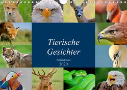 """Tierische Gesichter (Wandkalender 2020 DIN A4 quer) von """"aFriend"""" Freund,  Andreas"""