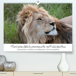 Tierische Glücksmomente mit Weisheiten (Premium, hochwertiger DIN A2 Wandkalender 2021, Kunstdruck in Hochglanz) von Bolkart,  Corinna