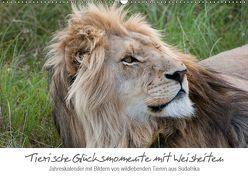 Tierische Glücksmomente mit Weisheiten (Wandkalender 2019 DIN A2 quer) von Bolkart,  Corinna
