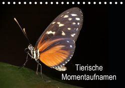 Tierische Momentaufnahmen (Tischkalender 2019 DIN A5 quer) von Krakowski,  Conny