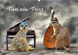 Tierische Trios (Wandkalender 2021 DIN A2 quer) von glandarius,  Garrulus
