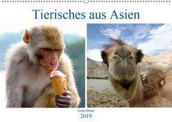 Tierisches aus Asien (Wandkalender 2019 DIN A2 quer) von Gruse,  Sven