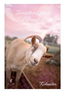 Tierisches Glück Lebenshof-Kalender A4