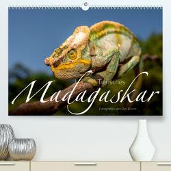 Tierisches Madagaskar (Premium, hochwertiger DIN A2 Wandkalender 2020, Kunstdruck in Hochglanz) von Bruhn,  Olaf