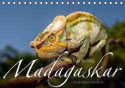 Tierisches Madagaskar (Tischkalender 2019 DIN A5 quer) von Bruhn,  Olaf
