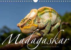 Tierisches Madagaskar (Wandkalender 2019 DIN A4 quer) von Bruhn,  Olaf