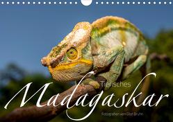 Tierisches Madagaskar (Wandkalender 2020 DIN A4 quer) von Bruhn,  Olaf