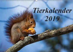 Tierkalender 2019 (Wandkalender 2019 DIN A2 quer) von Tschöpe,  Frank