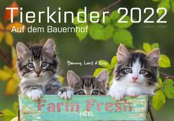 Tierkinder auf dem Bauernhof 2022 von Hubert,  M.-L., Klein,  J. L.
