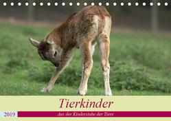 Tierkinder – Aus der Kinderstube der Tiere (Tischkalender 2019 DIN A5 quer) von Klatt,  Arno