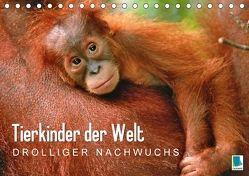 Tierkinder der Welt: Drolliger Nachwuchs (Tischkalender 2018 DIN A5 quer) von CALVENDO,  k.A.
