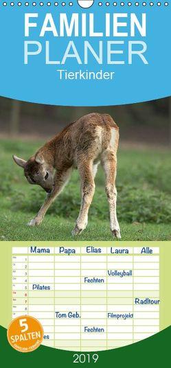 Tierkinder – Familienplaner hoch (Wandkalender 2019 <strong>21 cm x 45 cm</strong> hoch) von Klatt,  Arno