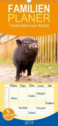 Tierkinder – Familienplaner hoch (Wandkalender 2019 , 21 cm x 45 cm, hoch) von Kantz,  Uwe