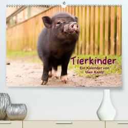 Tierkinder (Premium, hochwertiger DIN A2 Wandkalender 2021, Kunstdruck in Hochglanz) von Kantz,  Uwe