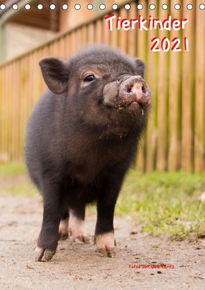 Tierkinder (Tischkalender 2021 DIN A5 hoch) von Kantz,  Uwe
