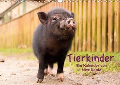 Tierkinder (Wandkalender 2019 DIN A3 quer) von Kantz,  Uwe
