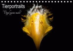 Tierportraits – Vögel ganz nah (Tischkalender 2019 DIN A5 quer) von Honold,  Alexander