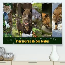 Tierspuren in der Natur (Premium, hochwertiger DIN A2 Wandkalender 2021, Kunstdruck in Hochglanz) von Schörkhuber,  Johann