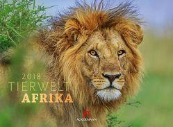 Tierwelt Afrika 2018