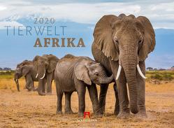 Tierwelt Afrika 2020