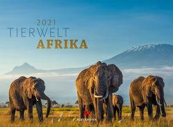 Tierwelt Afrika Kalender 2021