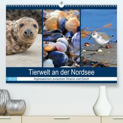 Tierwelt an der Nordsee 2020 (Premium, hochwertiger DIN A2 Wandkalender 2020, Kunstdruck in Hochglanz) von Lehmann (Hrsg.),  Steffani