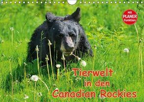 Tierwelt in den Canadian Rockies (Wandkalender 2018 DIN A4 quer) von Wilczek,  Dieter-M.