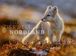Tierwelt Nordland Kalender 2022