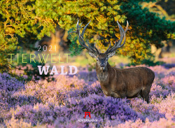 Tierwelt Wald Kalender 2021