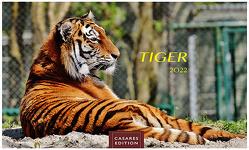 Tiger. 2022 L 35x50cm