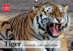 Tiger. Gestreift, wild und schön (Wandkalender 2019 DIN A2 quer) von Stanzer,  Elisabeth