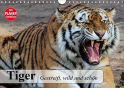 Tiger. Gestreift, wild und schön (Wandkalender 2019 DIN A4 quer) von Stanzer,  Elisabeth