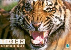Tiger: Gestreifte Jäger aus Asien (Wandkalender 2018 DIN A3 quer) von CALVENDO,  k.A.