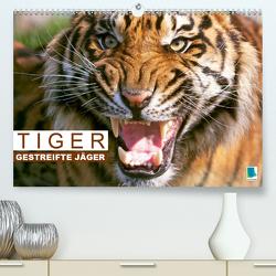 Tiger: Gestreifte Jäger aus Asien (Premium, hochwertiger DIN A2 Wandkalender 2020, Kunstdruck in Hochglanz) von CALVENDO
