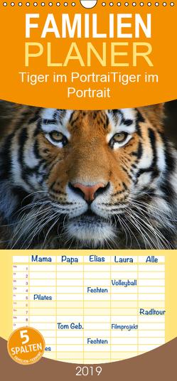 Tiger im Portrait – Familienplaner hoch (Wandkalender 2019 , 21 cm x 45 cm, hoch) von Krone,  Elke